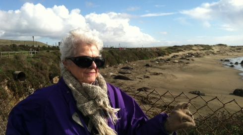 Lois Wilson at Elephant Seal Rookery