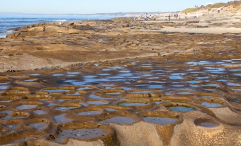 Unusual formations in the reef at Hospitals Beach are caused by boulders that were trapped and have been released.